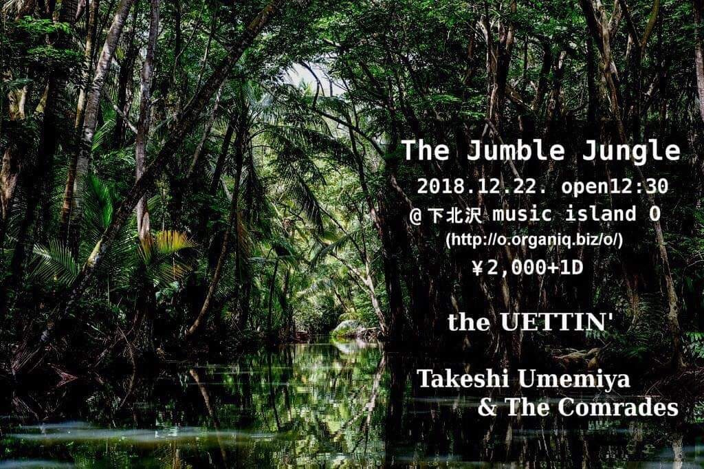 The Jumble Jungle【昼】